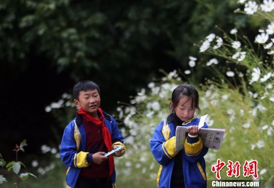 课间,学生们还在温习功课。 王磊 摄